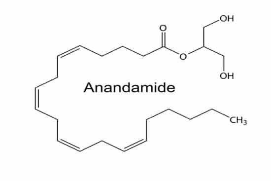 Anandamine