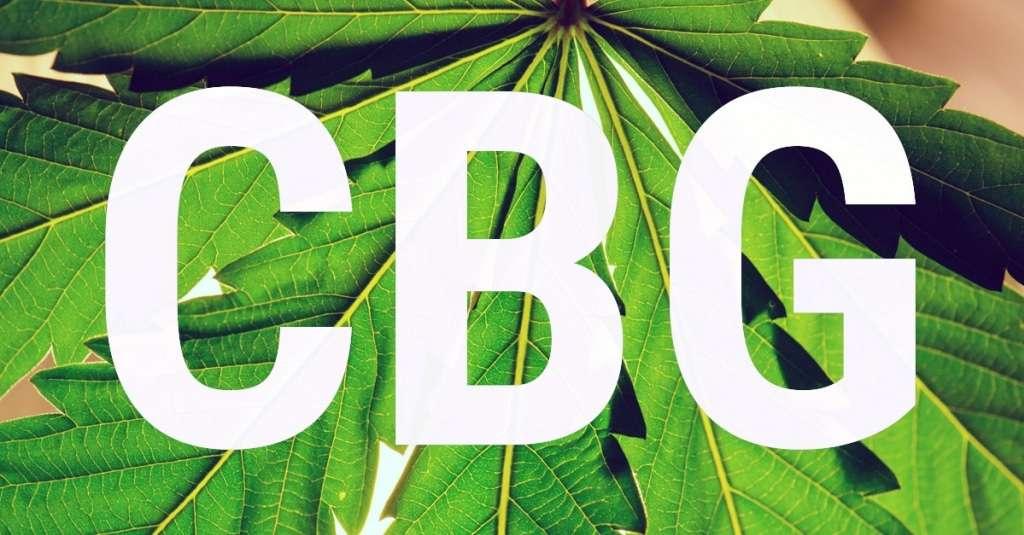 Le CBG Cannabigerol