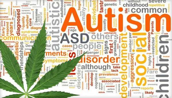 USA : 4.7 millions de $ pour étudier le CBD et l'autisme