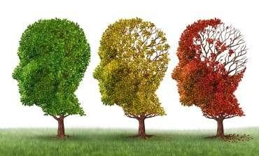 Effets du CBD sur les symptômes psychologiques et la fonction cognitive chez les utilisateurs réguliers de cannabis