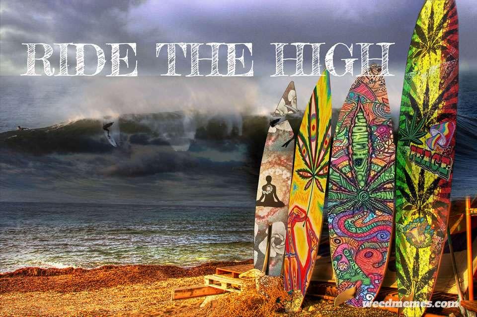 La Fédération Internationale de Surf autorise le CBD