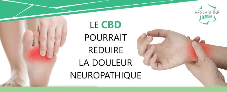Étude : Le CBD pourrait réduire la douleur neuropathique