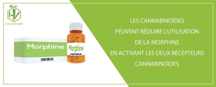 Les cannabinoïdes peuvent réduire l'utilisation de la morphine
