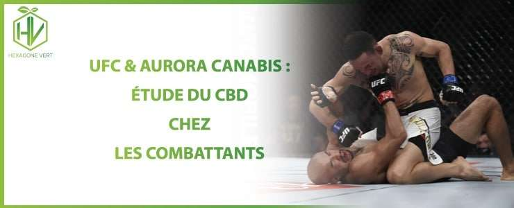 UFC CBD