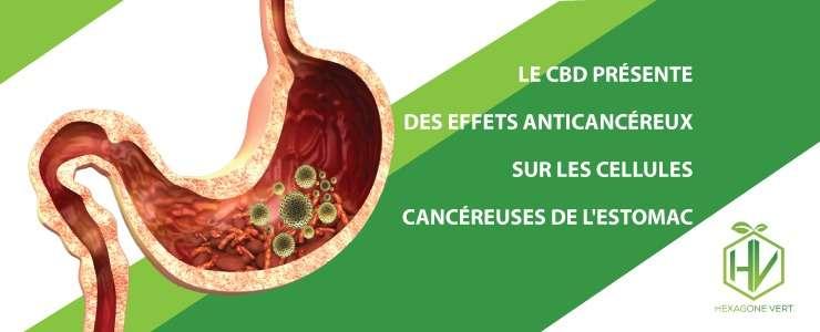 cbd anticancéreux