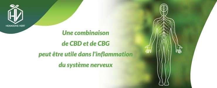 CBD CBG inflammation