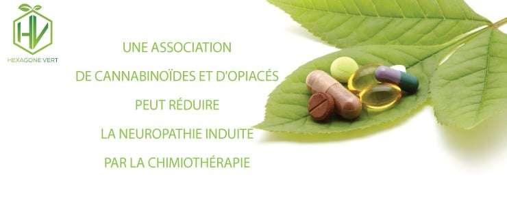 cannabinoïdes et chimiothérapie