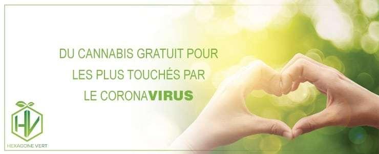 cannabis CBD coronavirus