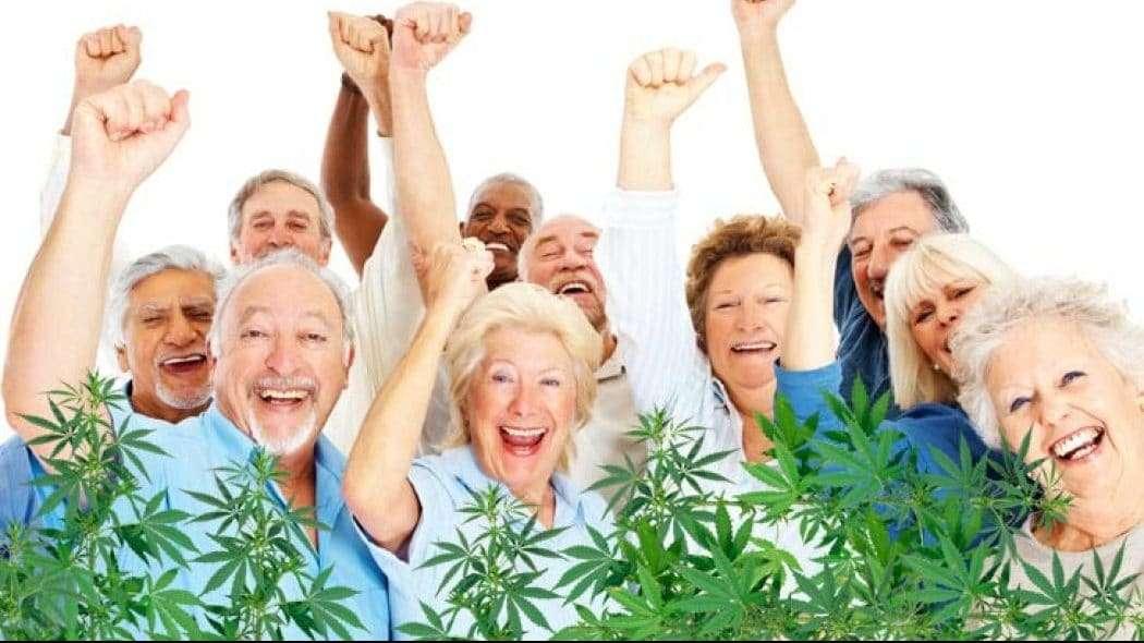 cannabis seniors