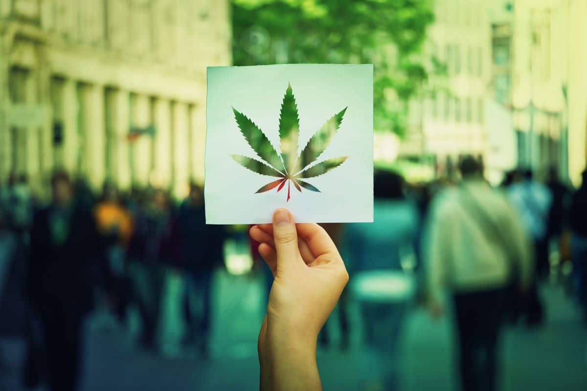 arthrite douleurs cannabis