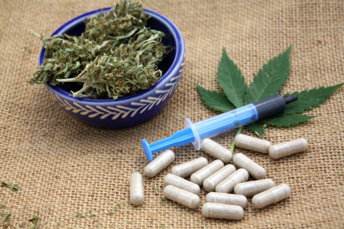 sclérose en plaques cannabis