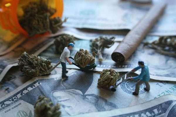 cannabis travail